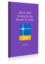 What is DWG